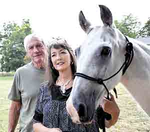 Stolen horse inspires international organization