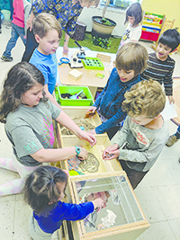 Kids Place Ecology Room offers hands-on learning