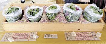 Foothills Farmers' Market ...