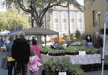 Foothills Farmers' Market Draws Big Crowd