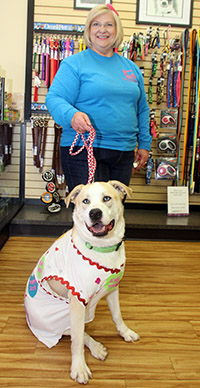 Dog Show Fundraiser featured pets for adoption