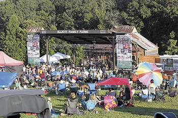 Clear Mountain View IV Music Festival brings music, visitors to county