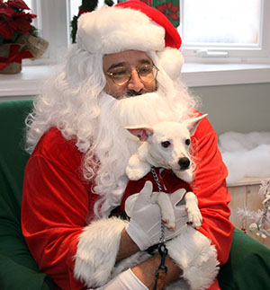 Paws and Claus Fundraiser...