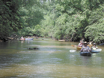 Paddling The First Broad River