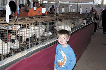 CLEVELAND COUNTY FAIR'S POULTRY BARN