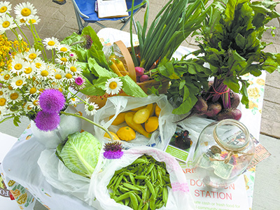 Wondering what to do with your abundant home garden produce?