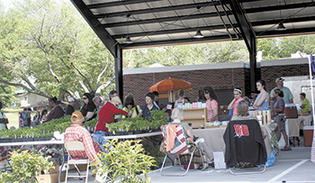 Foothills Farmers' Market Grand Opening in City Pavilion