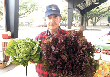 Foothills Farmers' Market to  extend to a year-round market