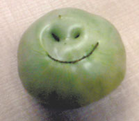 Happy Farmers Grow Happy Tomatoes!