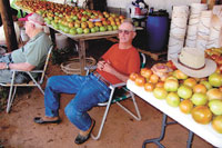 """Help & Pray For """"The Tomato Man"""""""