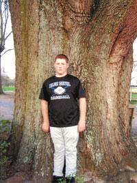 Winners Of 2012 Big Tree & Goofiest Looking Tree Contest Announced