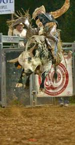 Rodeo Polkville June 15-16