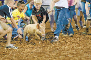 RODEO POLKVILLE IS THIS WEEKEND!