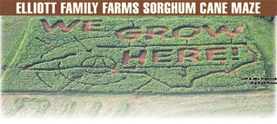 ELLIOTT FAMILY FARMS Sorghum Cane Maze