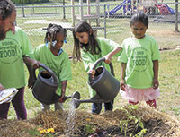 Look for the Eat Smart Move More School Community Gardens!