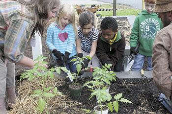 EAT SMART MOVE MORE SCHOOL COMMUNITY GARDENS...
