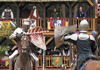 The Carolina Renaissance Festival Celebrates 20 Years of Cheers!