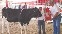 Twenty-One Youth Complete 4-H Livestock Project
