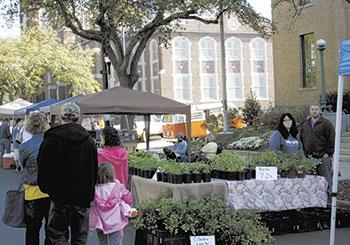 Foothills Farmers' Market Draws Big Crowd