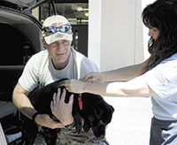 Free Rabies Vaccine Clinic Huge Success