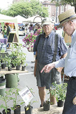 Foothills Farmers' Market Offers Local Variety