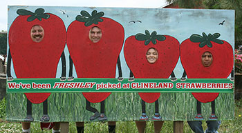 Become part of the crop at Clineland Strawberries!